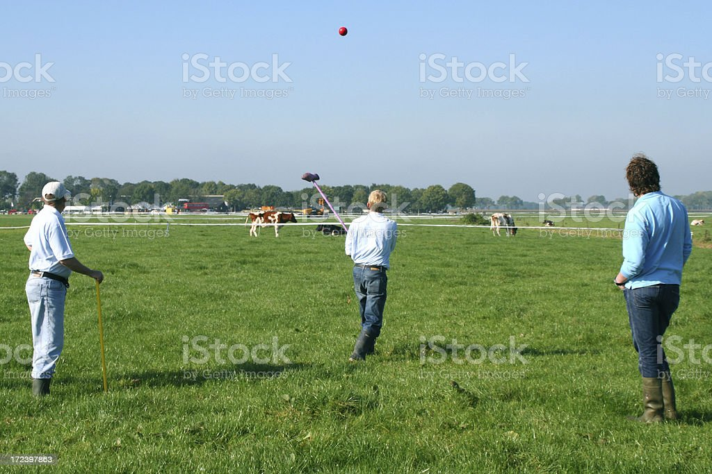 Farmersgolf # 3 royalty-free stock photo