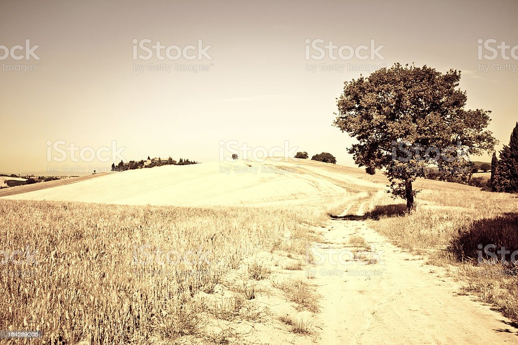 Farmhouse and Country Road in Val d'Orcia, Tuscany royalty-free stock photo