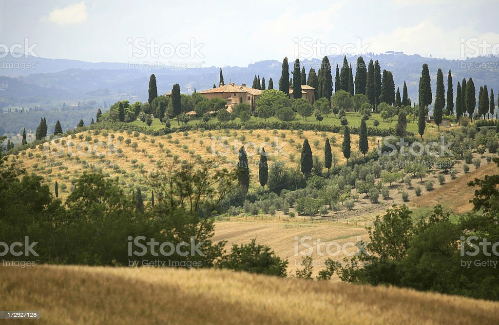 Farmhouse and cypress lined road in Tuscany,?Italy royalty-free stock photo