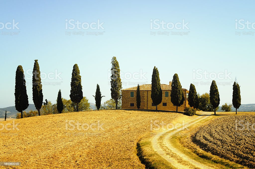 Farmhouse and Cypress Trees stock photo