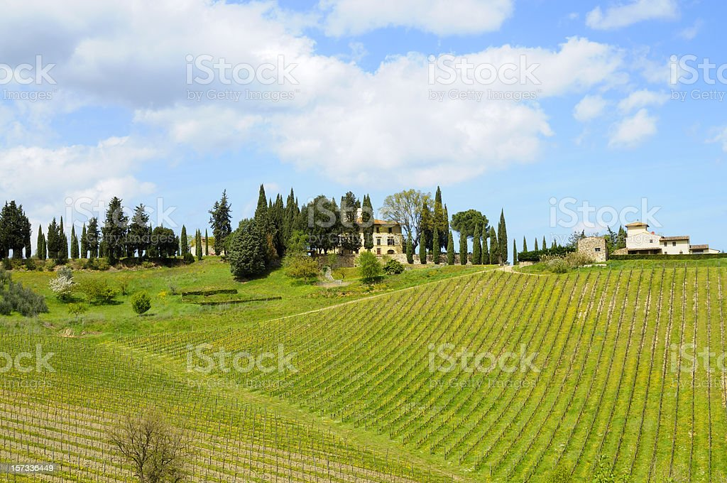 Farmhouse and Vineyard Landscape royalty-free stock photo