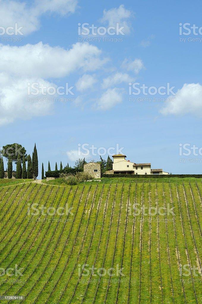 Farmhouse and Vineyard Landscape royalty-free stock photo