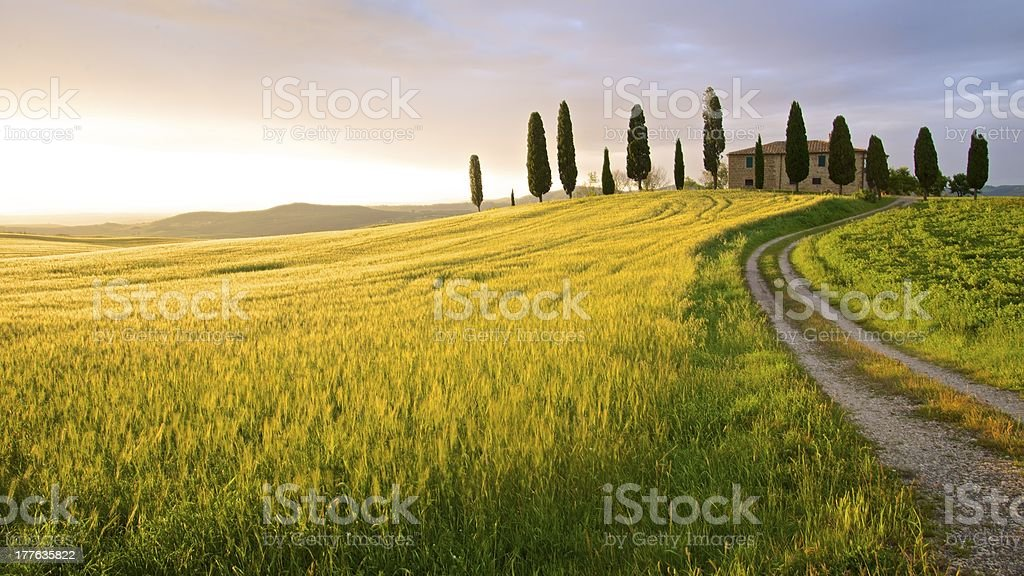 Farmhouse in sunset - Tuscany, Italy stock photo
