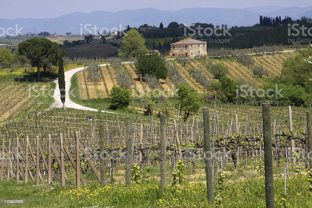 Farmhouse in Tuscany royalty-free stock photo