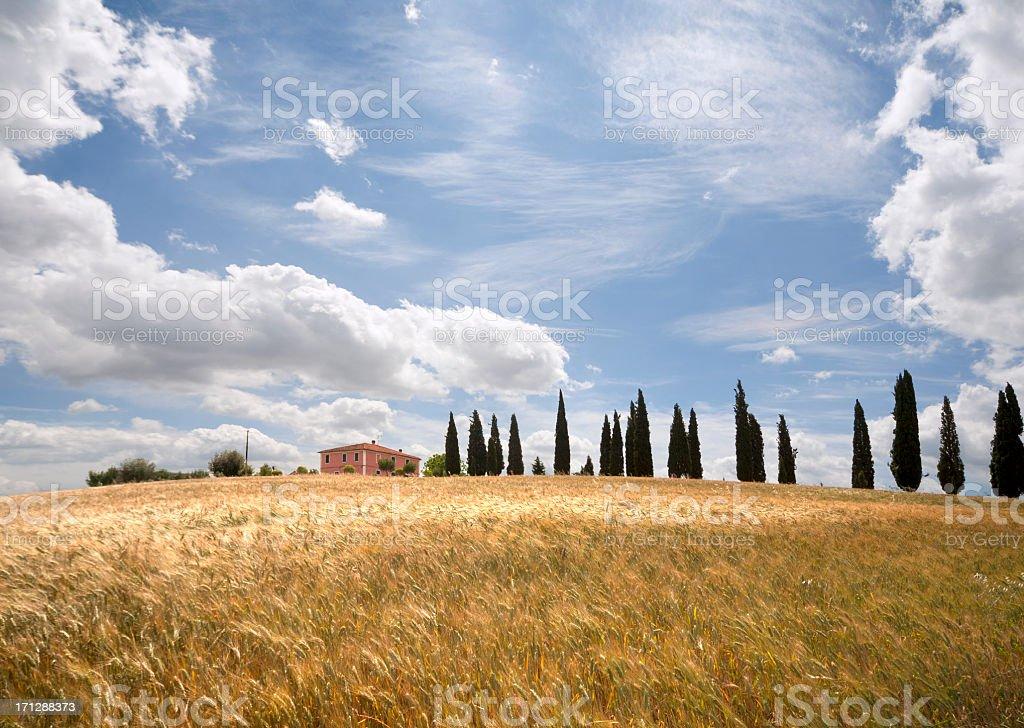 Farmhouse in Val d'Orcia, Tuscany, Italy royalty-free stock photo