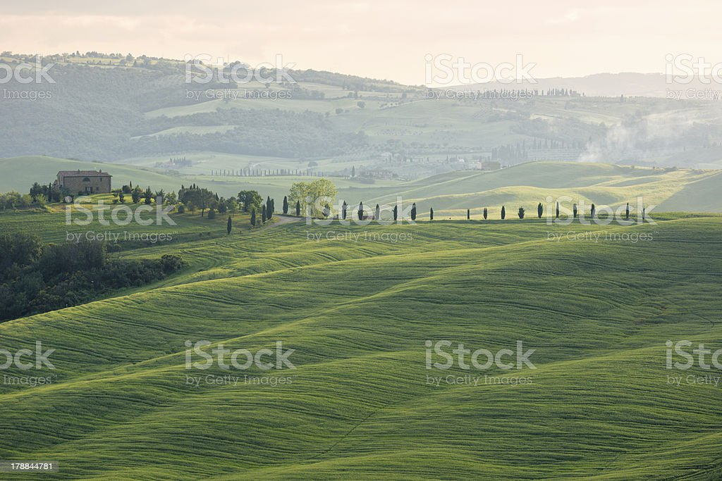 Farmhouse with cypess alley and fields, Tuscany, Italy royalty-free stock photo