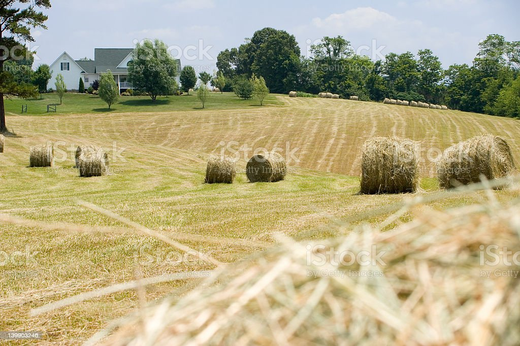 Farmhouse with field and hay bales royalty-free stock photo