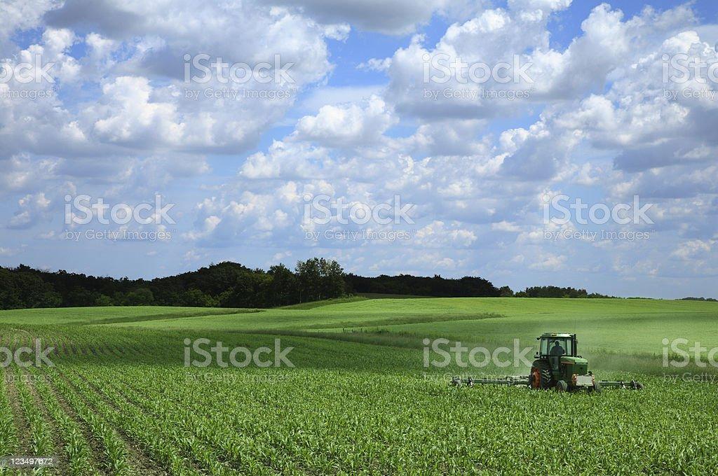 Farming a Corn Field royalty-free stock photo