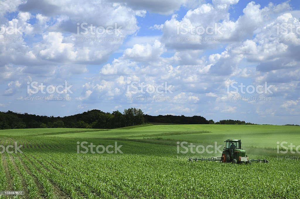 Farming a Corn Field stock photo