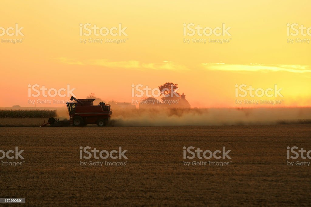 Farming at Sunset royalty-free stock photo