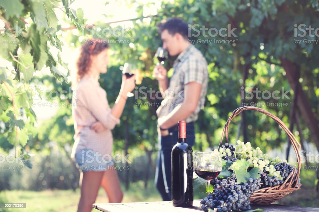 farming couple drinking wine during the harvest stock photo