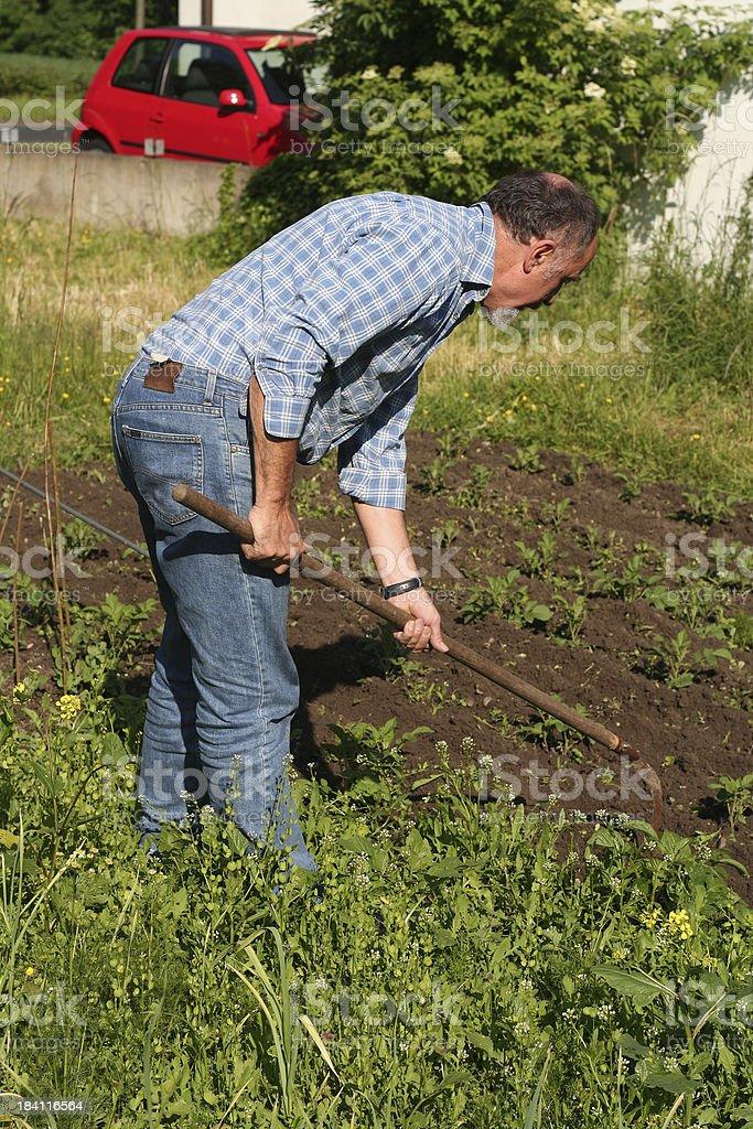 Farming Gardening royalty-free stock photo