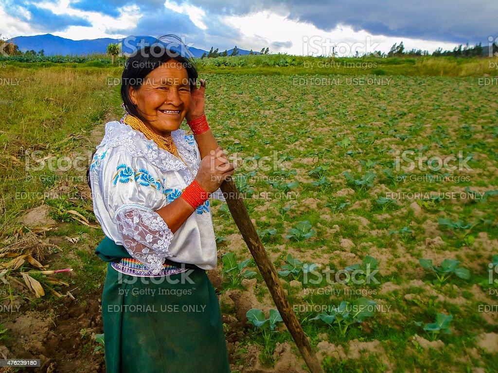 Farming in Otavalo, Ecuador stock photo