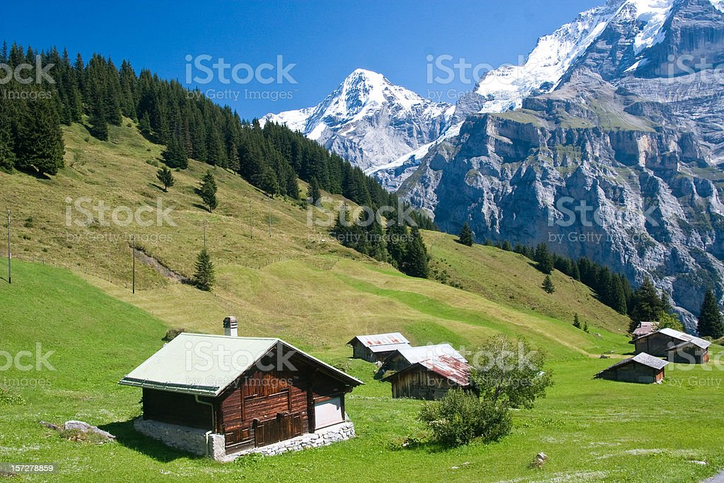 Farming in Switzerland stock photo