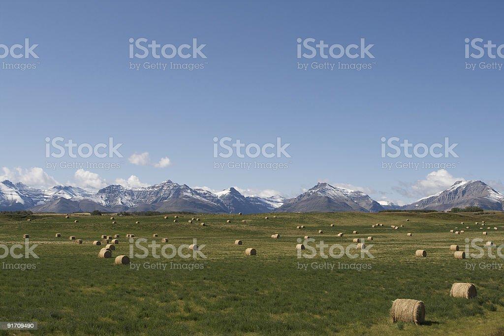 Farming on the prairies royalty-free stock photo