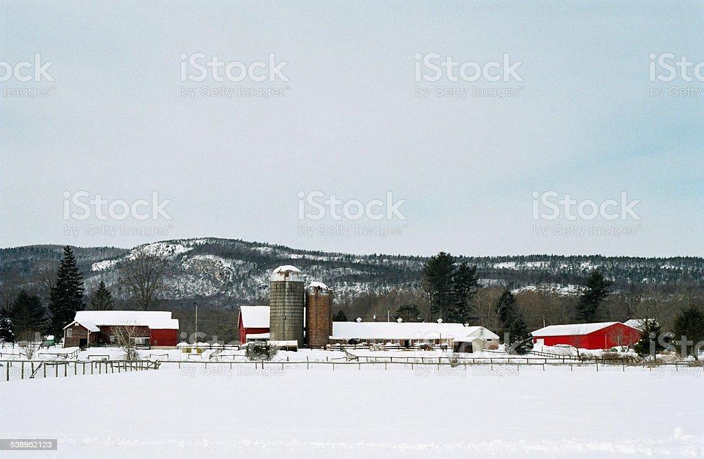 Ranchs d'élevage paysage d'hiver photo libre de droits