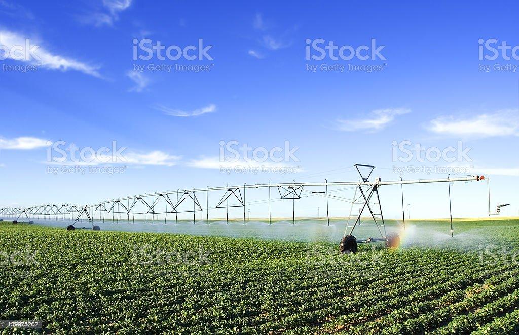 Farming tool stock photo