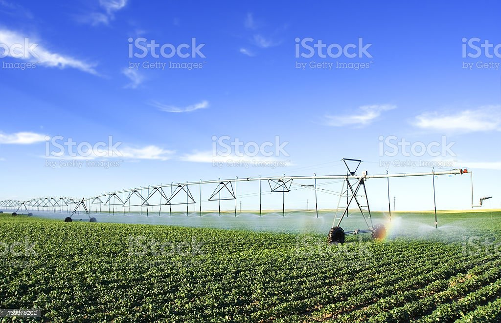Farming tool stock photo