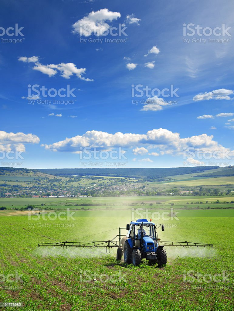 Farming tractor plowing and spraying on corn field stock photo
