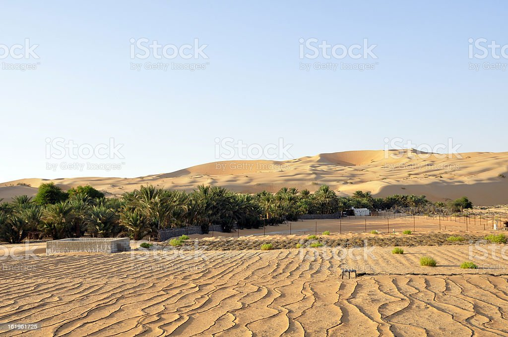 Farming under the dunes, Liwa stock photo
