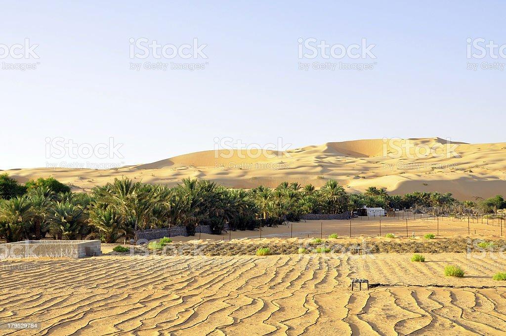 Farming under the dunes, Liwa royalty-free stock photo