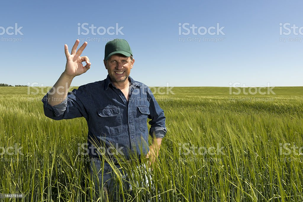 Farming's A-OK stock photo