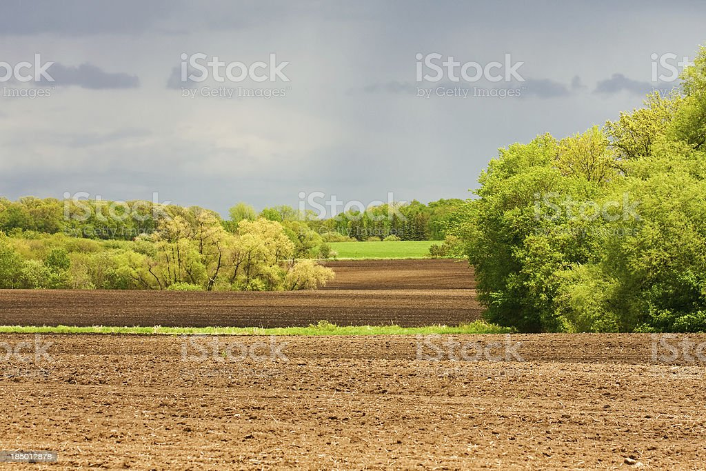 Farmland and Forest royalty-free stock photo
