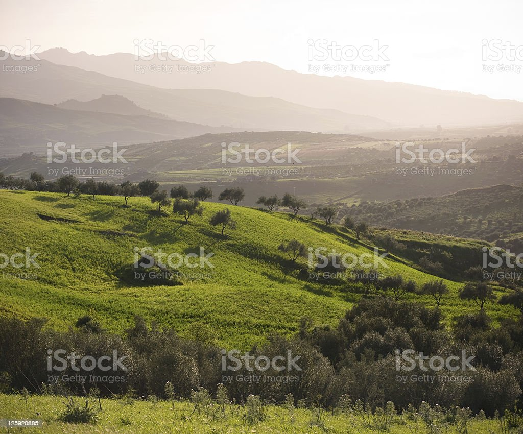 Farmland And Mountain Range In Misty Twilight royalty-free stock photo