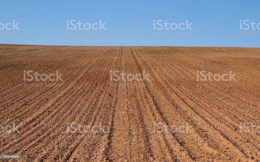 Farmland Furrows Plowed  - Surcos en Tierras de Cultivo Aradas stock photo