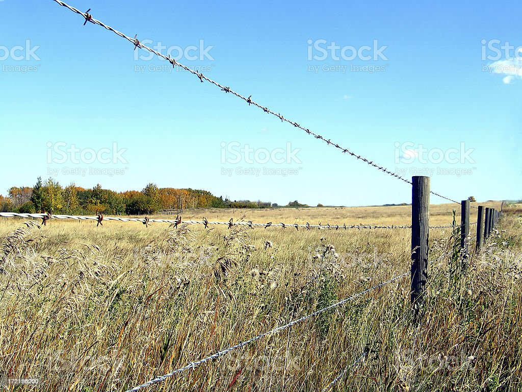 Farmland in Autumn behind barbwire fence royalty-free stock photo
