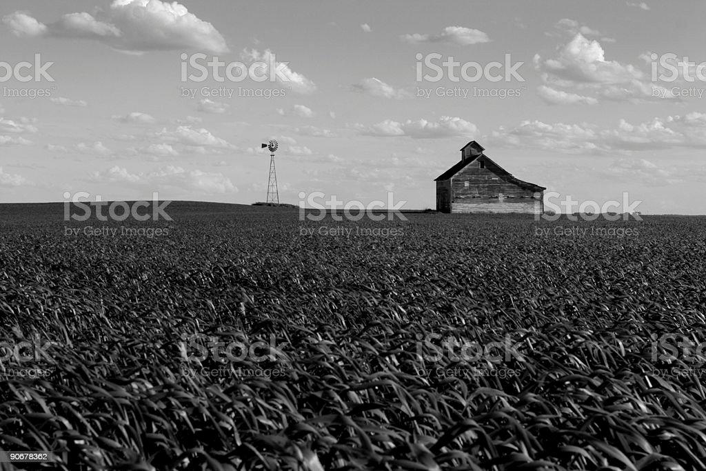 Farmland in Black and White stock photo