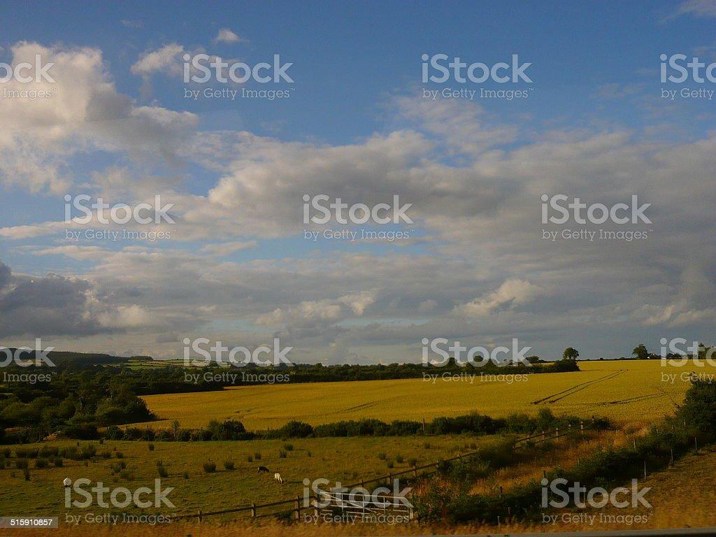 farmland in ireland royalty-free stock photo