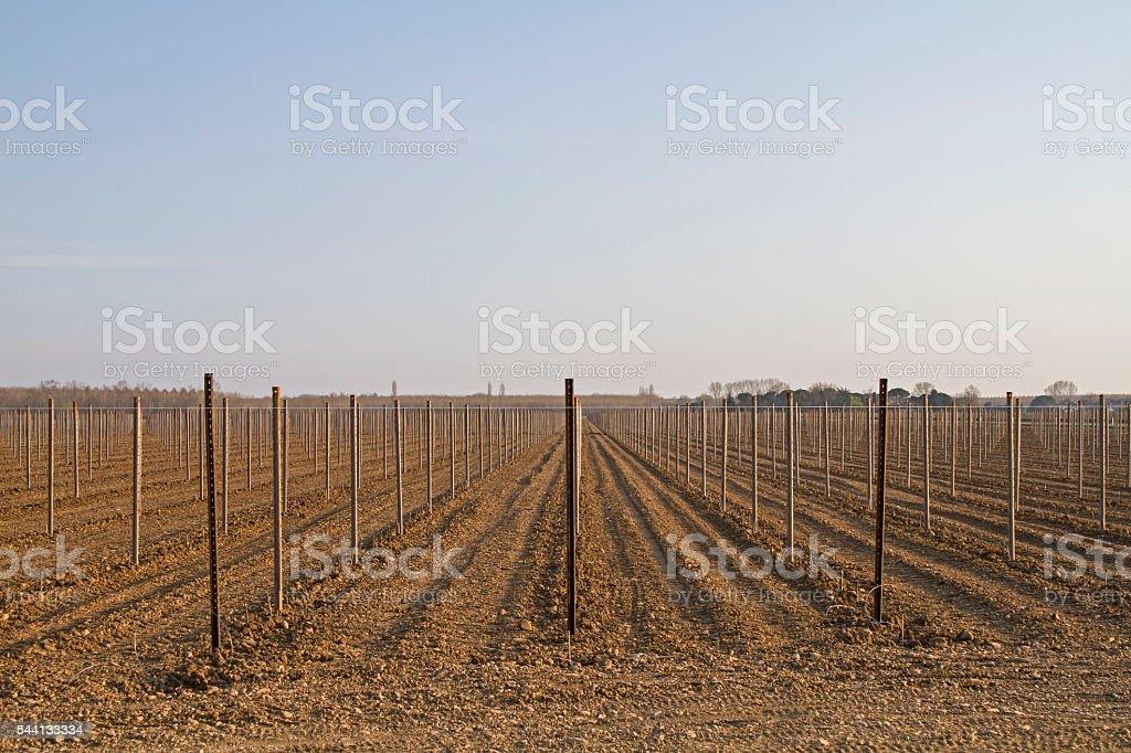 Farmland in spring stock photo