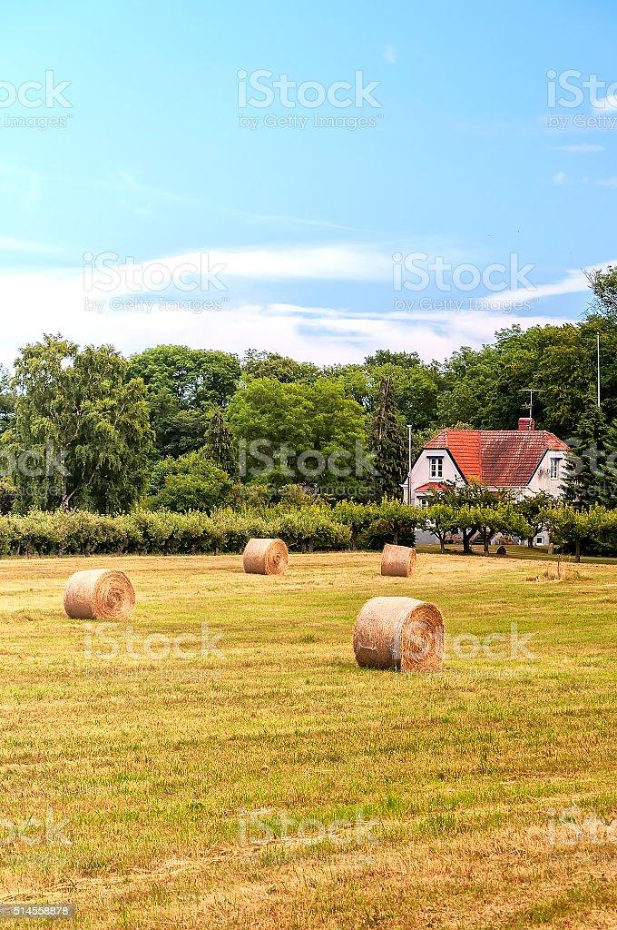Farmland in Sweden stock photo