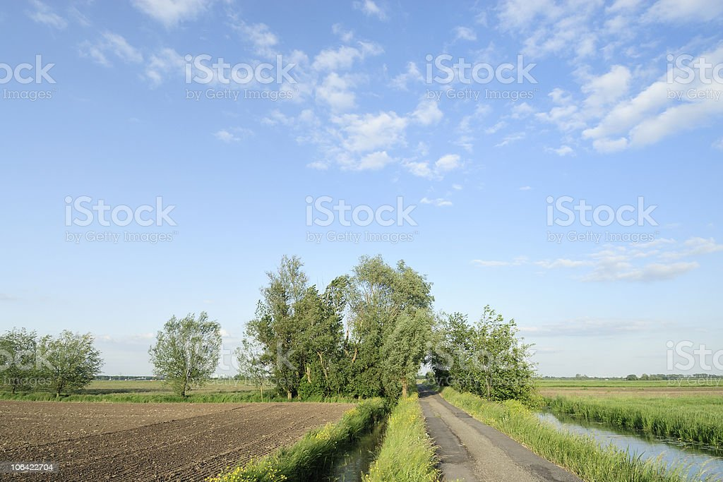 Farmland in the Netherlands with ditch and trees royalty-free stock photo