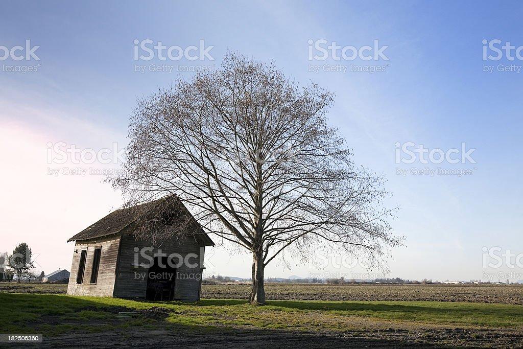 Farmland in Winter stock photo