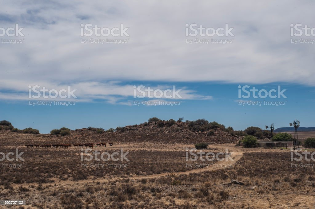 Farmland, Karoo, South Africa stock photo