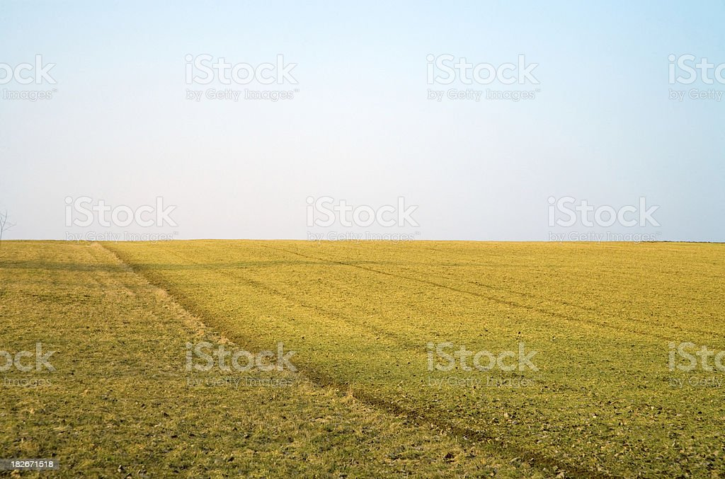 Farmland Landscape in Spring royalty-free stock photo