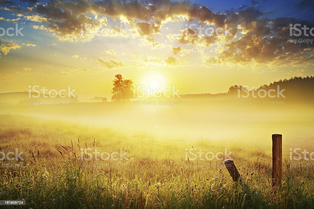 Farmland Landscape - Spring Meadow During Foggy Sunset stock photo
