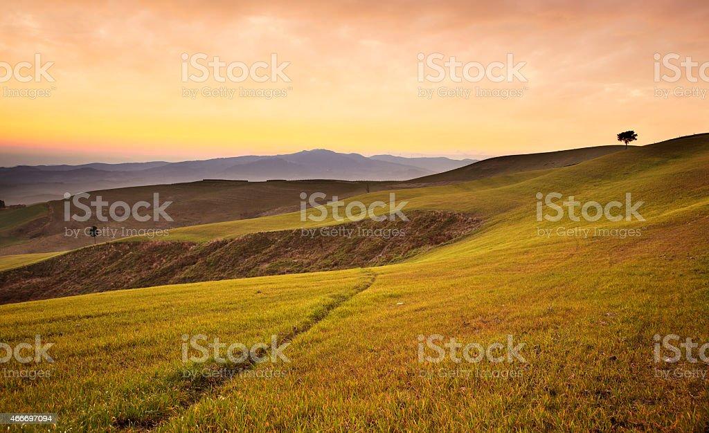 Farmland near Volterra, rolling hills on sunset. Rural landscape stock photo