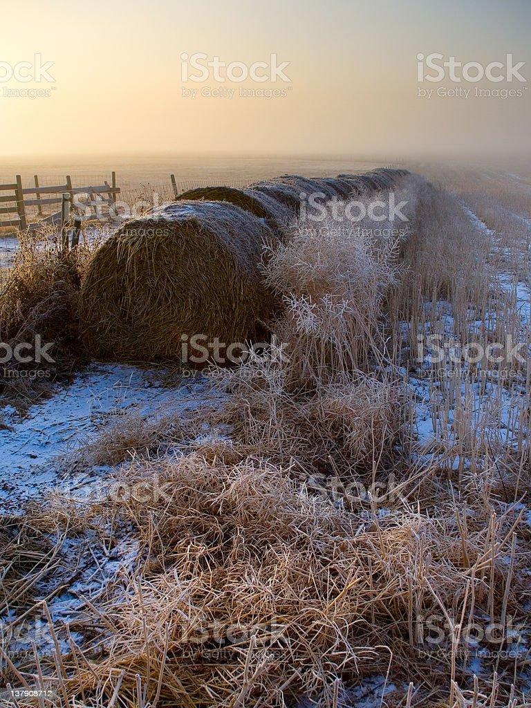 Farmland Sunrise royalty-free stock photo