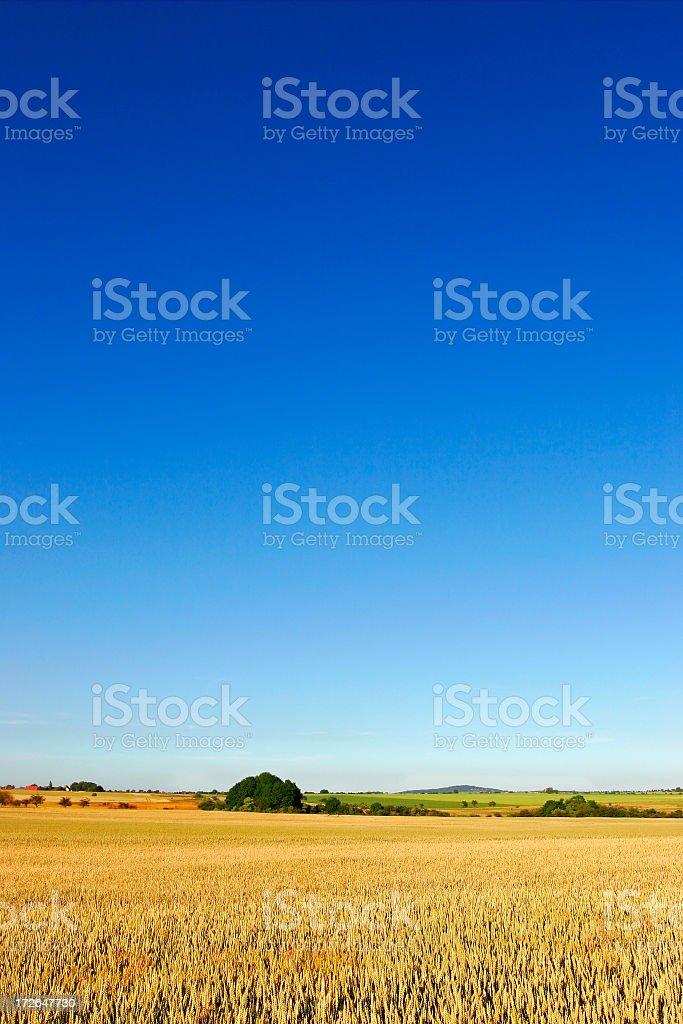Farmland under a big blue sky royalty-free stock photo