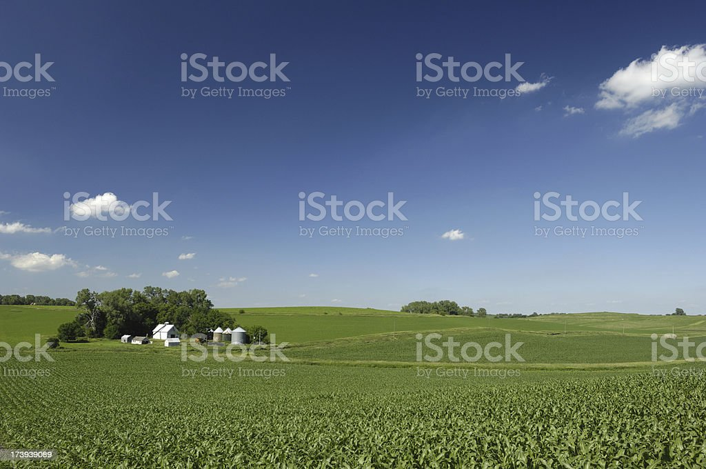 Farmland USA royalty-free stock photo