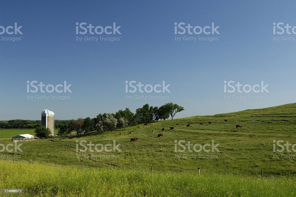 Farmland USA royalty-free stock photo
