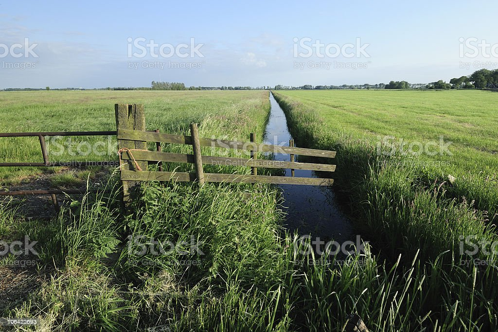 Farmland with ditch and fence during summer in the Netherlands royalty-free stock photo