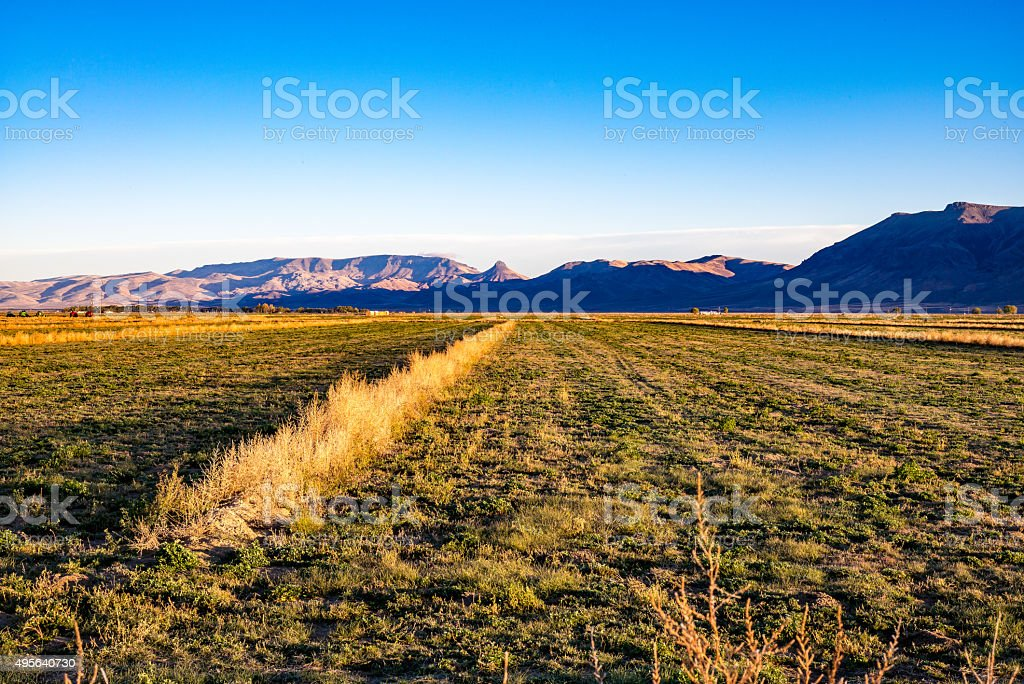 Farmland with windrows,mountains,equipment and wide angle fields. stock photo