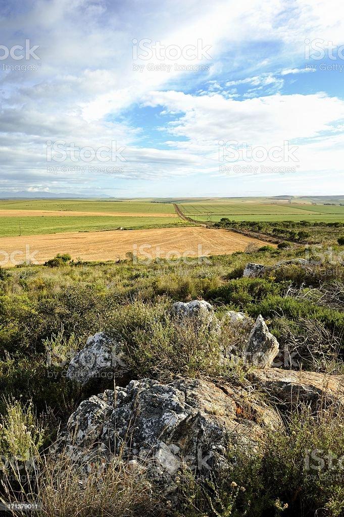 Farmlands in Cape Overberg stock photo