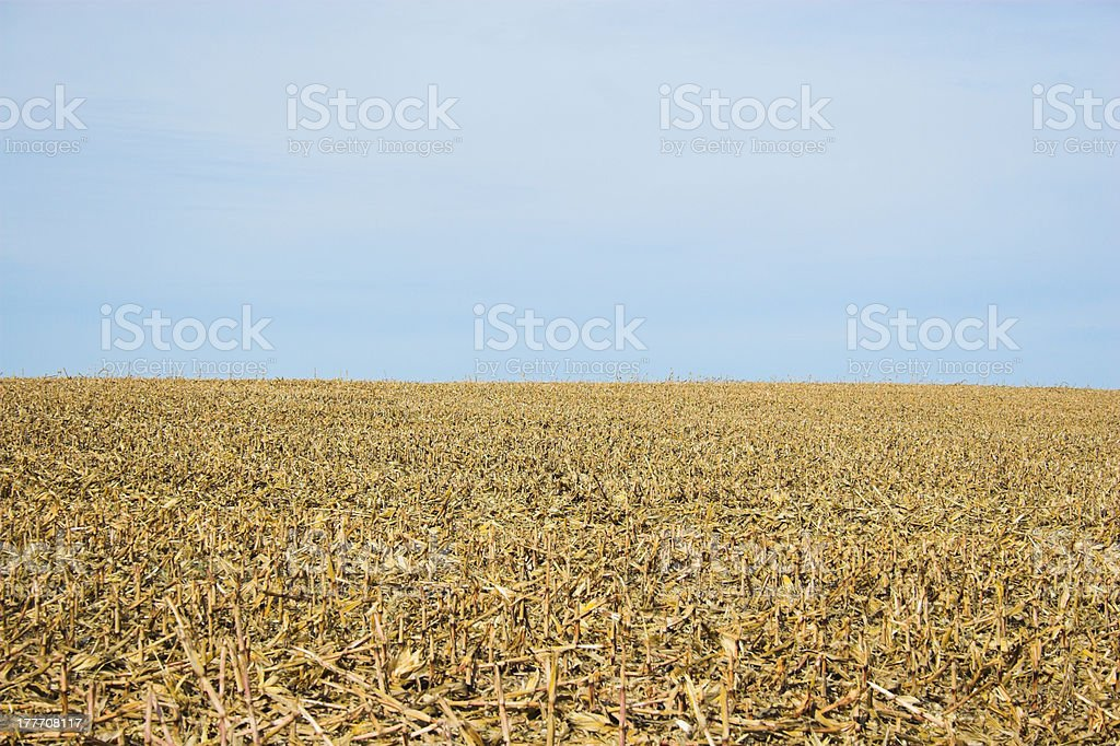 Farmscape royalty-free stock photo