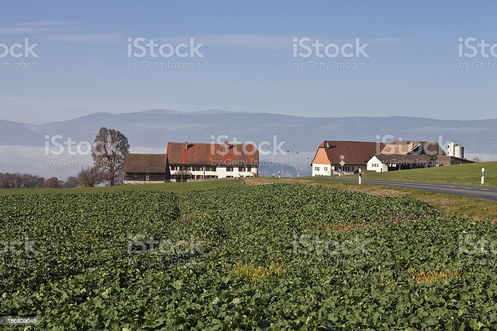 Farmstead on Hill in Vaud with Road royalty-free stock photo