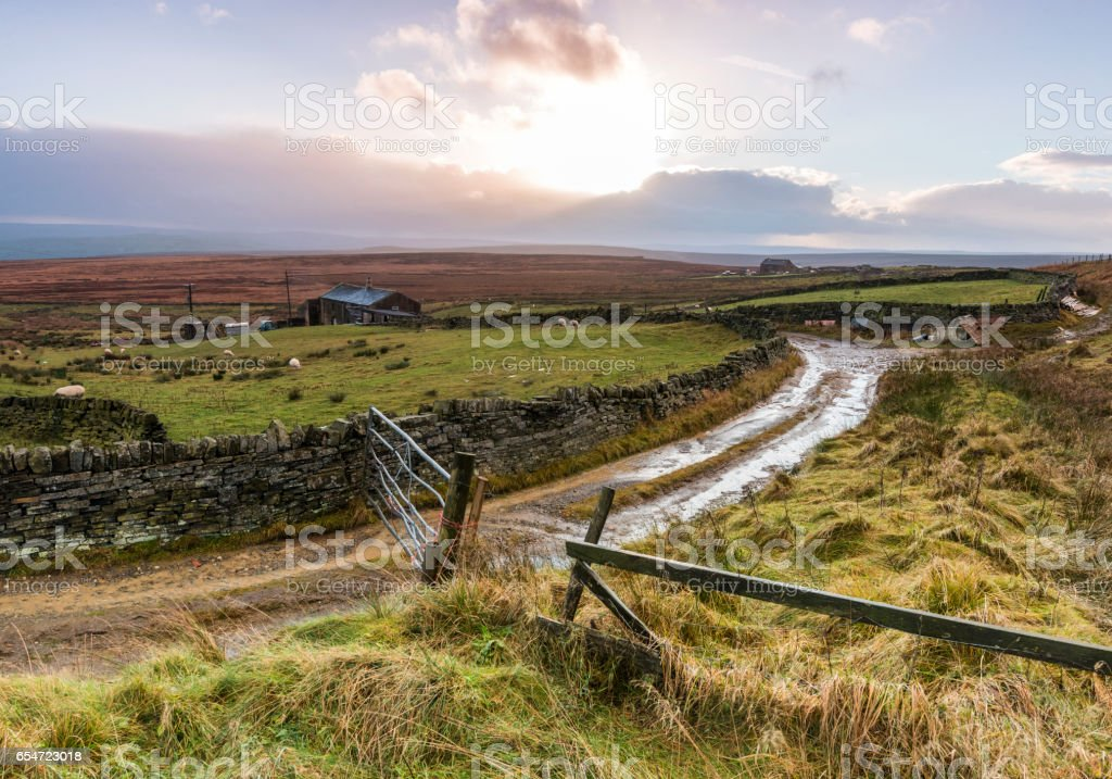 farmtrack on remote dales moorland stock photo